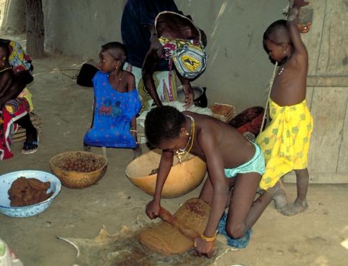 Le karité – Mali