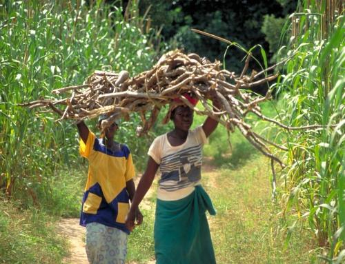 Plus de femmes et d'enfants, c'est plus de terres – Mali