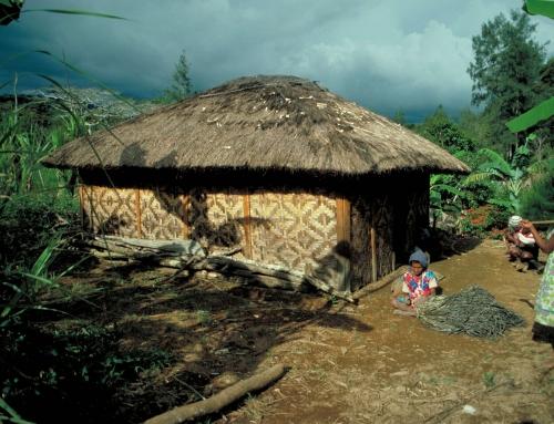 «L'an dernier ils ont brûlé notre maison» – Papuasie Nouvelle Guinea