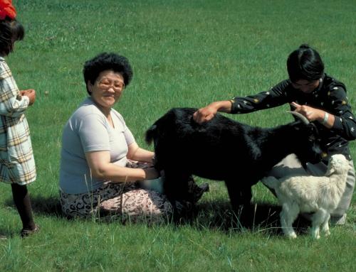Naître et mourir en Mongolie