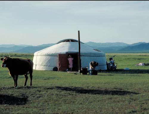Ouvert au passant – Mongolie