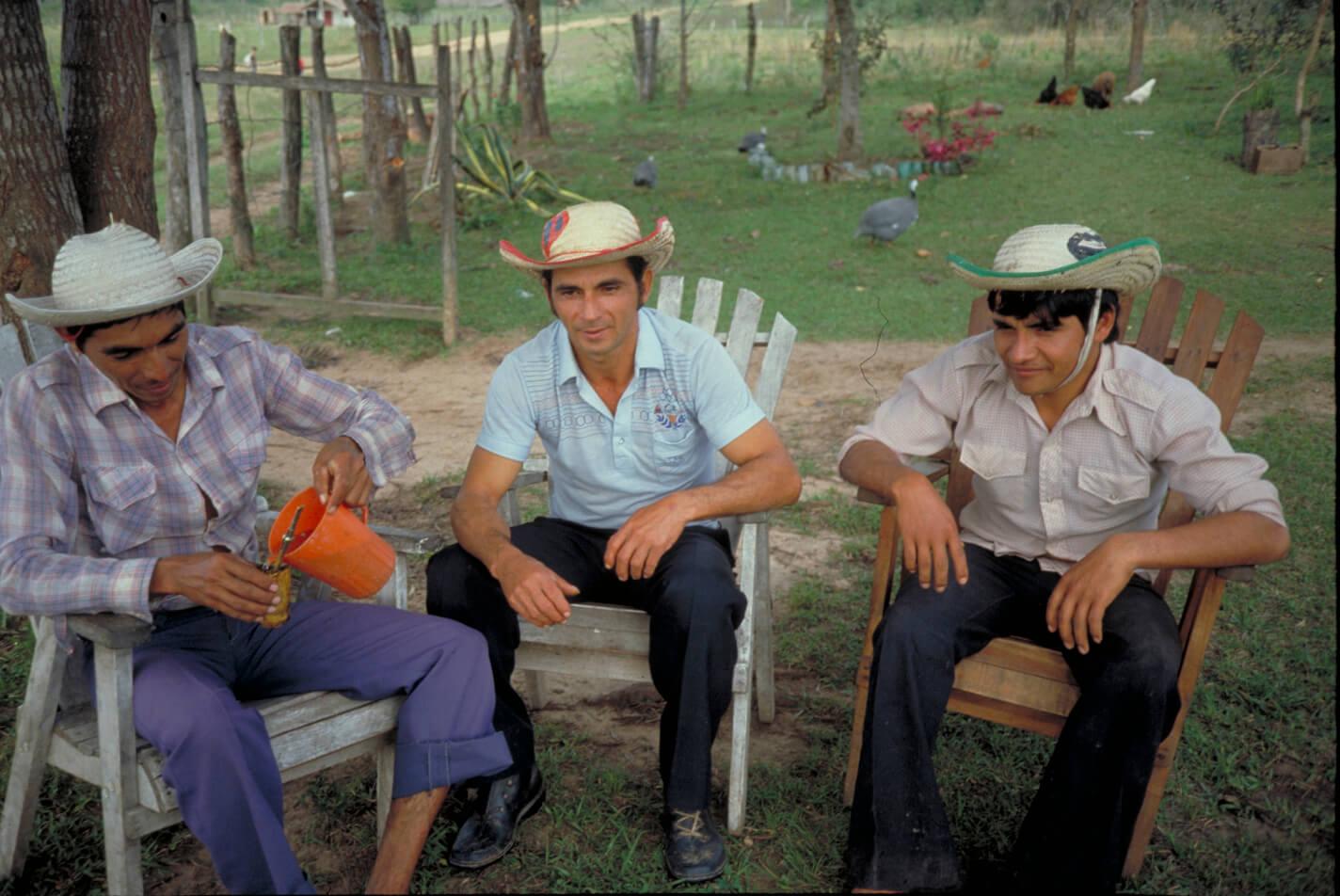 Yerba mate – Paraguay